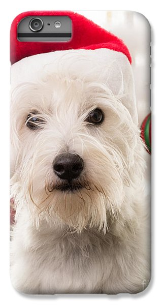Elf iPhone 7 Plus Case - Christmas Elf Dog by Edward Fielding