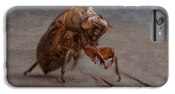 Insects iPhone 7 Plus Case - Cicada Shell by Tom Mc Nemar