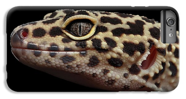 Closeup Head Of Leopard Gecko Eublepharis Macularius Isolated On Black Background IPhone 7 Plus Case by Sergey Taran