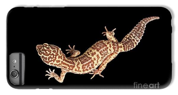 Closeup Leopard Gecko Eublepharis Macularius Isolated On Black Background IPhone 7 Plus Case by Sergey Taran