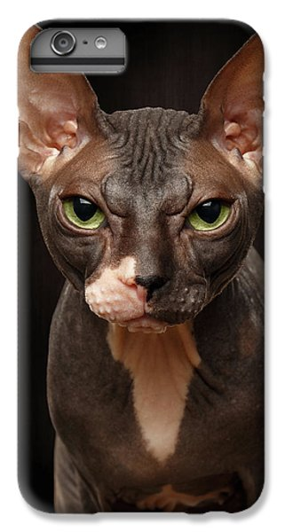 Cat iPhone 7 Plus Case - Closeup Portrait Of Grumpy Sphynx Cat Front View On Black  by Sergey Taran