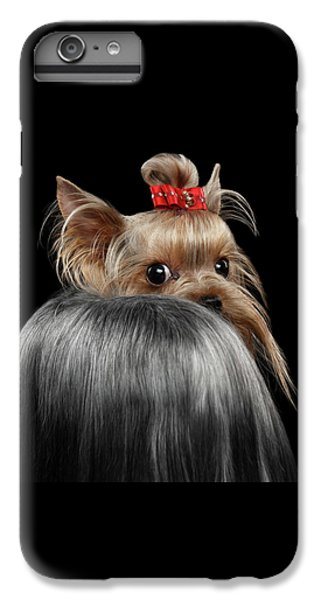 Closeup Yorkshire Terrier Dog, Long Groomed Hair Pity Looking Back IPhone 7 Plus Case