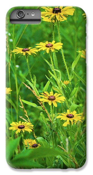 IPhone 7 Plus Case featuring the photograph Collection In The Clearing by Bill Pevlor