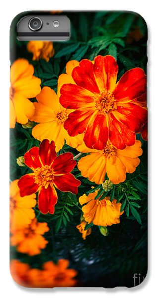 IPhone 7 Plus Case featuring the photograph Colorful Flowers by Silvia Ganora