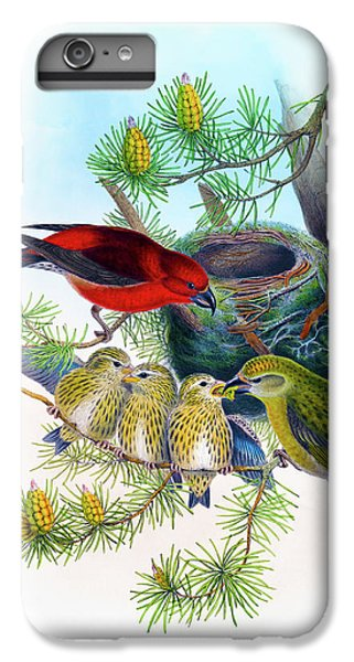 Common Crossbill Antique Bird Print John Gould Hc Richter Birds Of Great Britain  IPhone 7 Plus Case by Orchard Arts