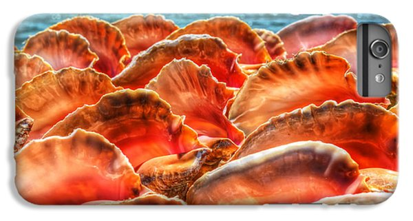 Conch Parade IPhone 7 Plus Case by Jeremy Lavender Photography