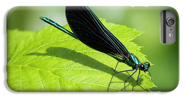 Ebony Jewelwing IPhone 7 Plus Case