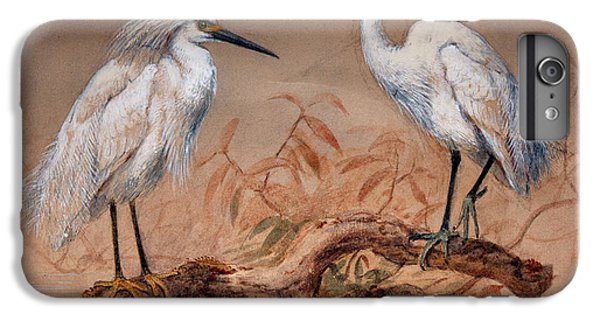 Egrets IPhone 7 Plus Case