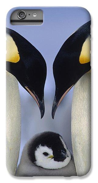 Emperor Penguin Family IPhone 7 Plus Case