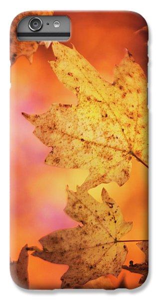 Fall Reveries IPhone 7 Plus Case by Priya Saihgal