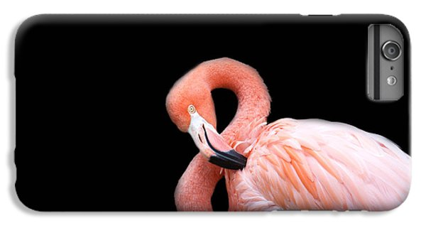 Flamingo 3 IPhone 7 Plus Case