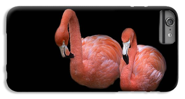 Flamingo 4 IPhone 7 Plus Case by Rebecca Cozart