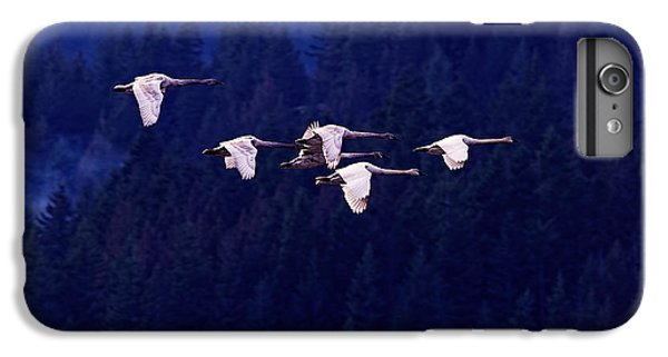 Flight Of The Swans IPhone 7 Plus Case by Sharon Talson