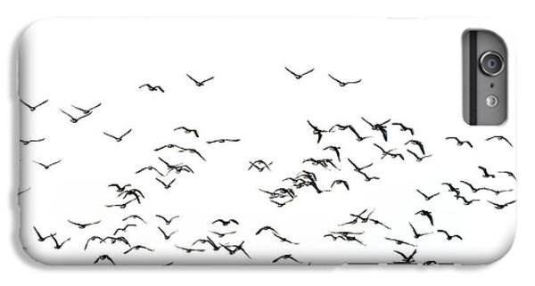 Flock Of Beautiful Migratory Lapwing Birds In Clear Winter Sky I IPhone 7 Plus Case by Matthew Gibson
