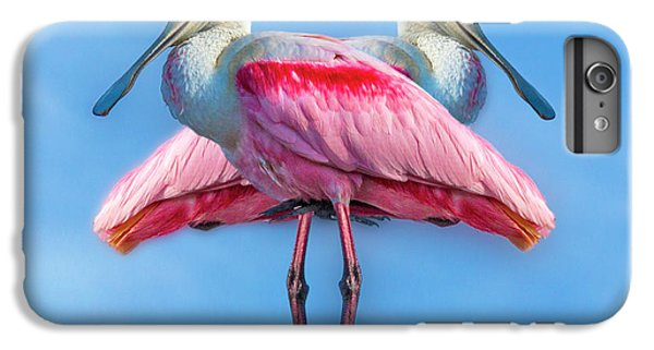 Spoonbill iPhone 7 Plus Case - Florida Keys Roseate Spoonbill by Betsy Knapp