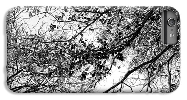 Featured Images iPhone 7 Plus Case - Forest Canopy Bw by Az Jackson