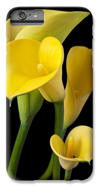 Lily iPhone 7 Plus Case - Four Yellow Calla Lilies by Garry Gay
