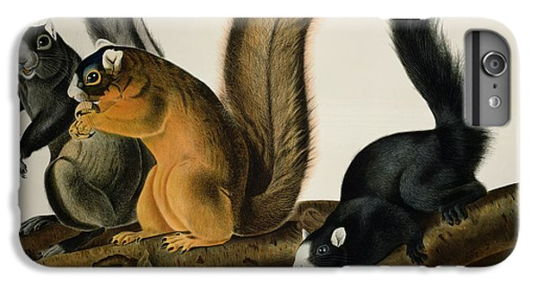 Fox Squirrel IPhone 7 Plus Case by John James Audubon