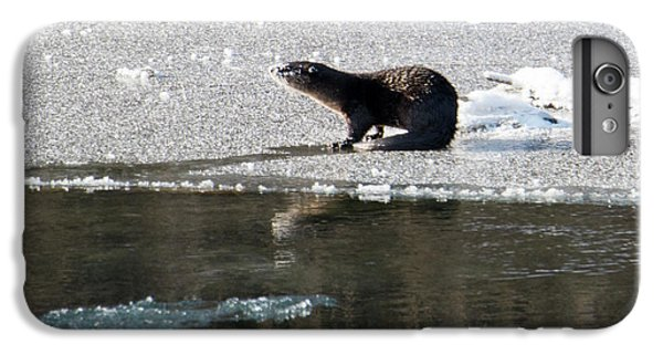 Frosty River Otter  IPhone 7 Plus Case by Mike Dawson