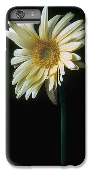 Daisy iPhone 7 Plus Case - Gerber Daisy by Laurie Paci