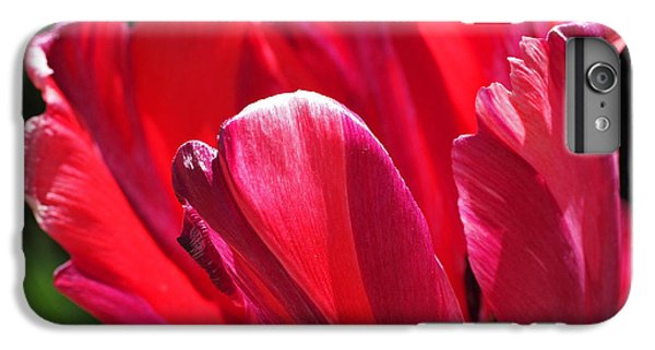 Glowing Red Tulip IPhone 7 Plus Case