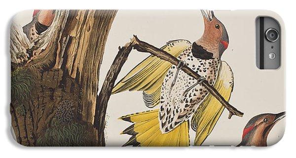 Golden-winged Woodpecker IPhone 7 Plus Case