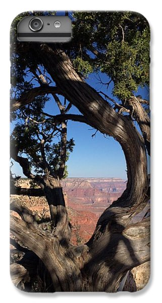 Grand Canyon No. 6 IPhone 7 Plus Case by Sandy Taylor