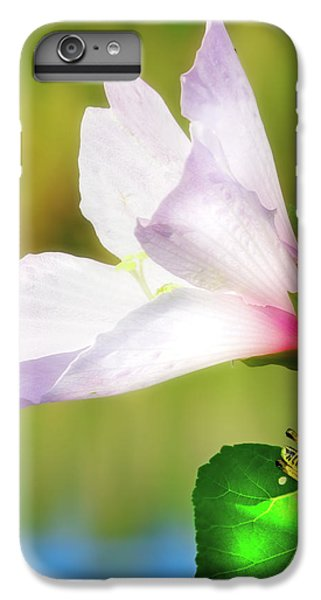 Grasshopper And Flower IPhone 7 Plus Case