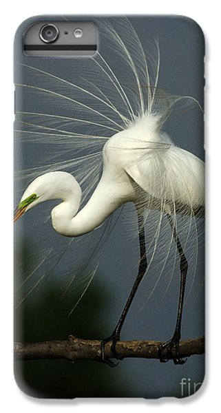 Majestic Great White Egret High Island Texas IPhone 7 Plus Case by Bob Christopher