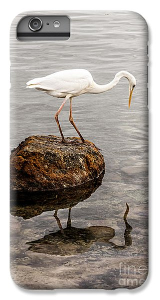 Great White Heron IPhone 7 Plus Case by Elena Elisseeva