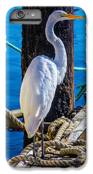 Great White Heron IPhone 7 Plus Case