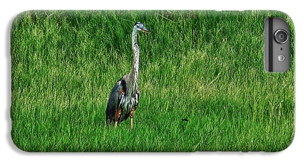 Shrimp Boats iPhone 7 Plus Case - Heron In The Grasses by Michael Thomas