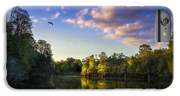 Ibis iPhone 7 Plus Case - Hidden Light by Marvin Spates
