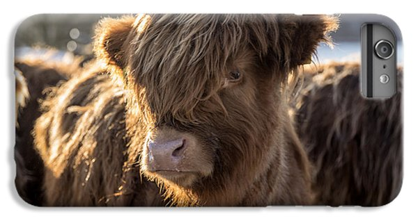 Highland Baby Coo IPhone 7 Plus Case by Jeremy Lavender Photography