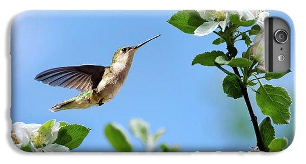 Hummingbird Springtime IPhone 7 Plus Case by Christina Rollo