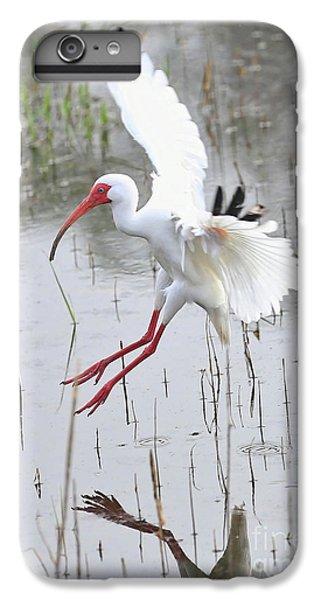 Ibis Soft Water Landing IPhone 7 Plus Case by Carol Groenen