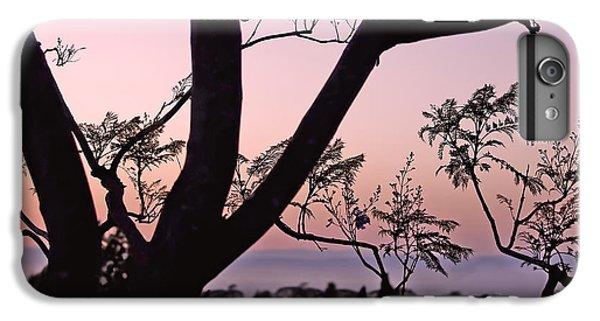 Jacaranda Silhouette IPhone 7 Plus Case by Rona Black