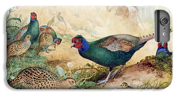 Japanese Pheasants IPhone 7 Plus Case by Joseph Wolf