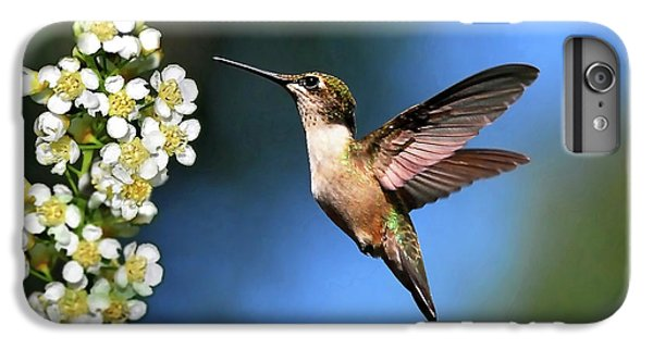 Just Looking IPhone 7 Plus Case by Christina Rollo