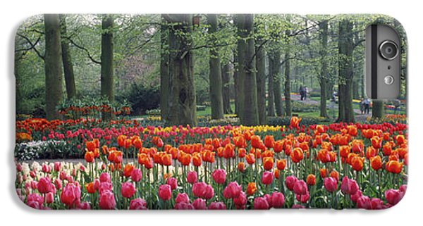 Keukenhof Garden, Lisse, The Netherlands IPhone 7 Plus Case
