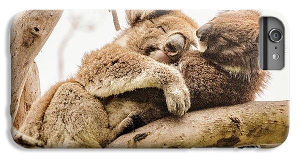 Koala 5 IPhone 7 Plus Case by Werner Padarin