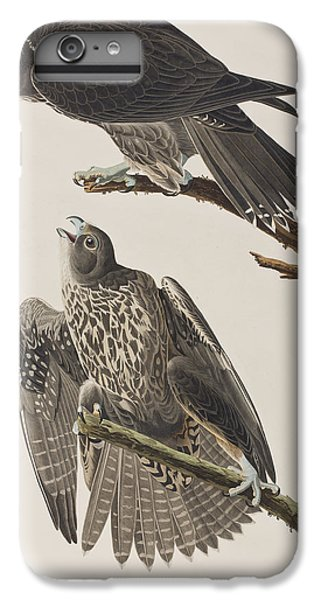 Labrador Falcon IPhone 7 Plus Case by John James Audubon
