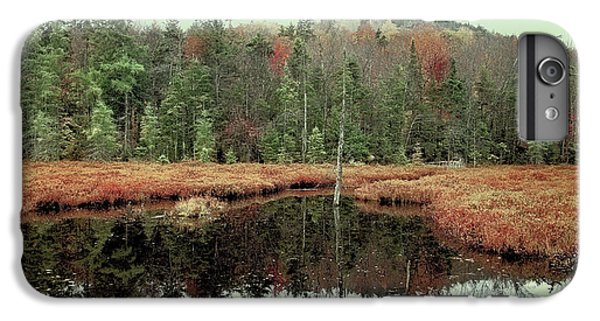IPhone 7 Plus Case featuring the photograph Last Of Autumn On Fly Pond by David Patterson