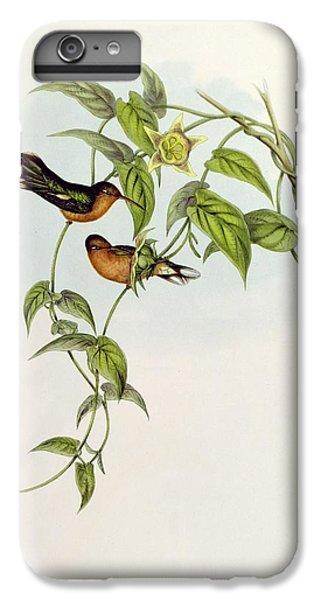Lovebird iPhone 7 Plus Case - Leucippus Fallax by John Gould