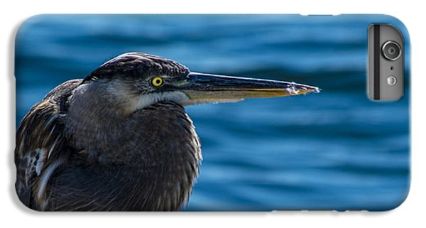 Looking For Lunch IPhone 7 Plus Case by Marvin Spates