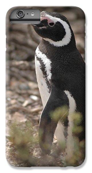 Magellanic Penguin No. 1 IPhone 7 Plus Case