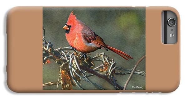 Male Cardinal IPhone 7 Plus Case