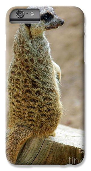 Meerkat iPhone 7 Plus Case - Meerkat Portrait by Carlos Caetano