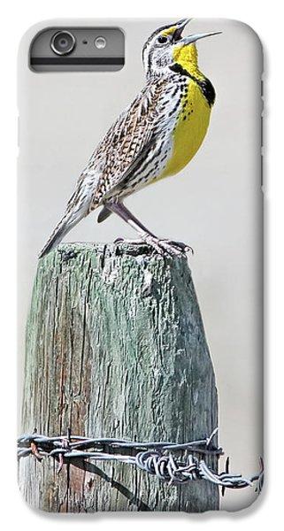 Meadowlark iPhone 7 Plus Case - Montana Meadowlark's Spring Song by Jennie Marie Schell