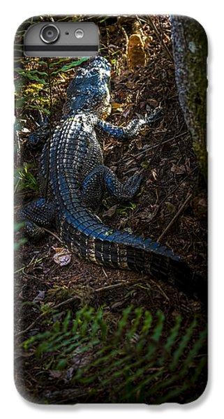 Mr Alley Gator IPhone 7 Plus Case